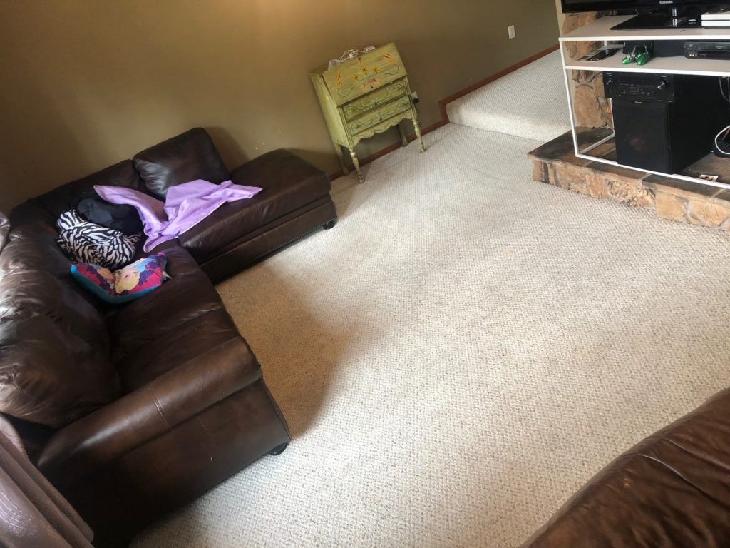 Clean carpet in the living room